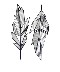 Transparent feathers geometric. Native sacred by zuskaart
