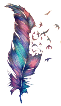 Transparent feathers hipster. Feather tumblr edit