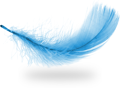Transparent feathers lightweight. I triple monitor wallpaper