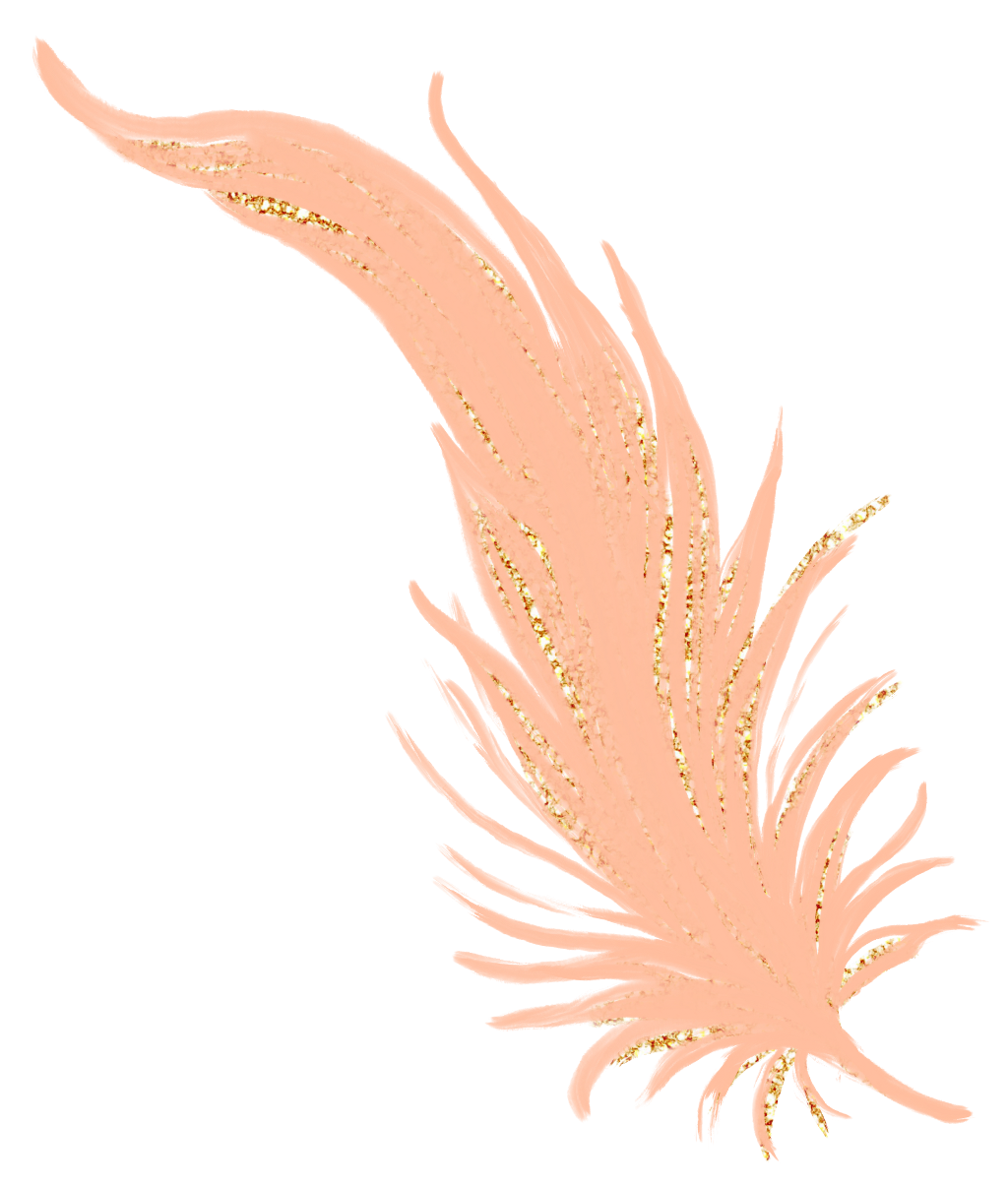 Transparent feathers pastel. Feather golden gold rosegold