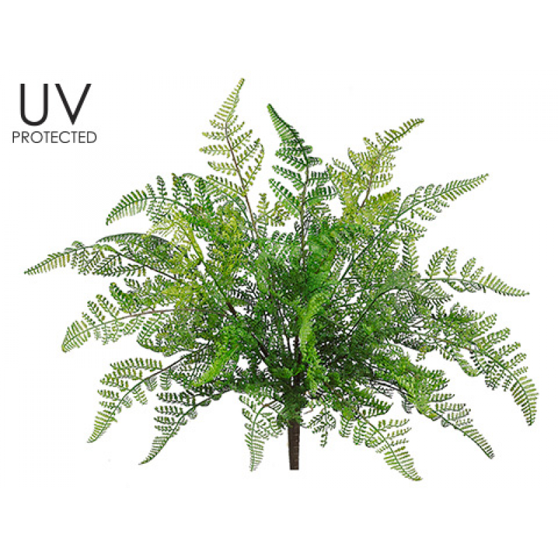 inch uv protected. Transparent fern bush banner black and white download