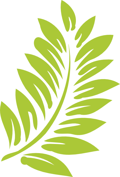 png freeuse download. Fern clipart leaf accent clipart freeuse