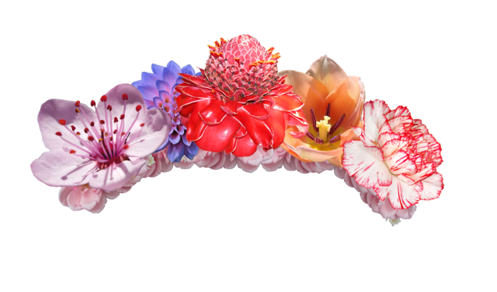 Transparent flower crown png. Official psds share this