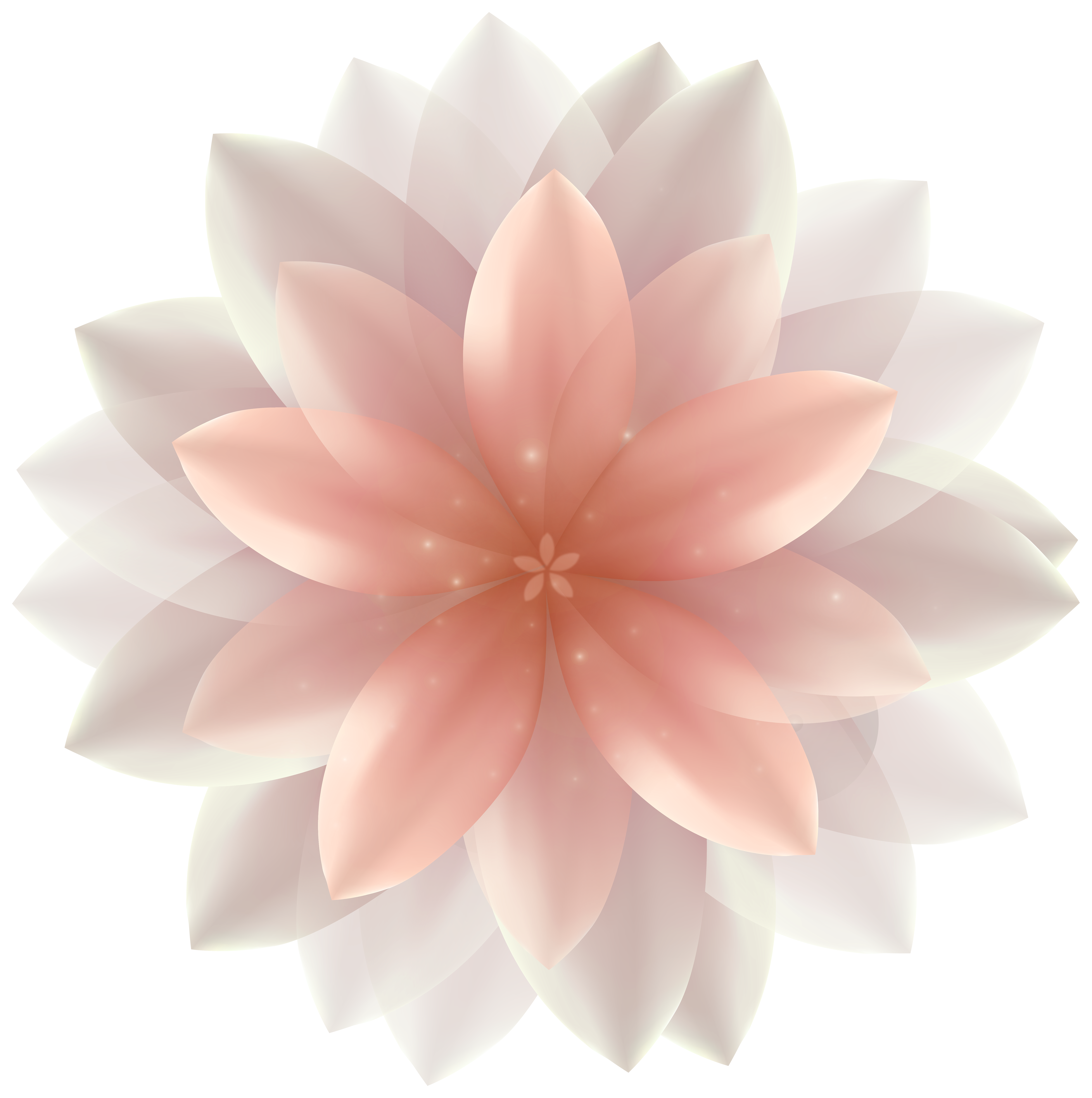 Transparent flower png. Beautiful clipart image gallery