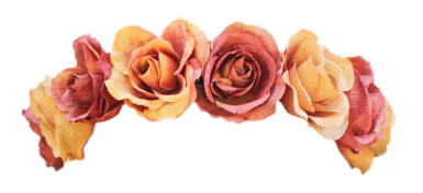 Transparent flowercrown. Flower crown png pictures