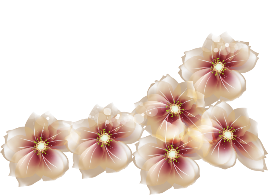 Transparent flowers png. Clipart gallery yopriceville high