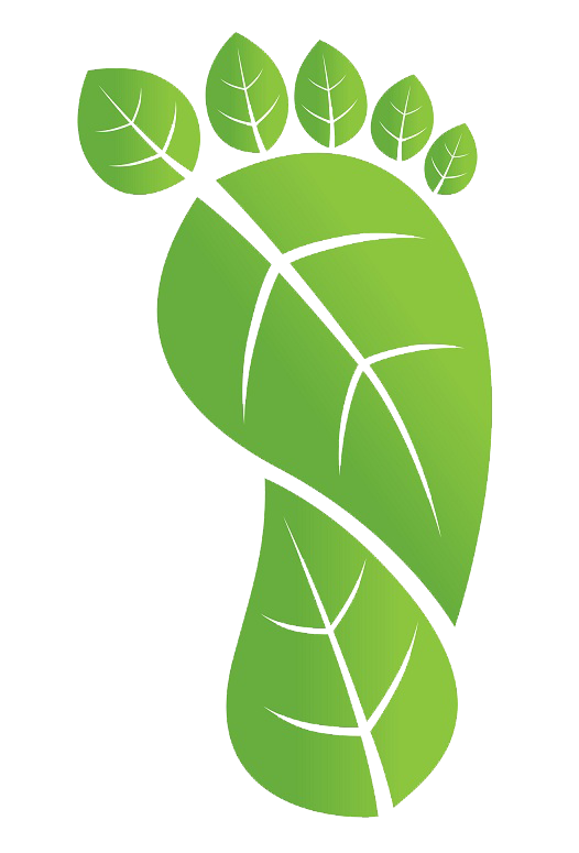 Transparent footprints carbon. Five tips for reducing