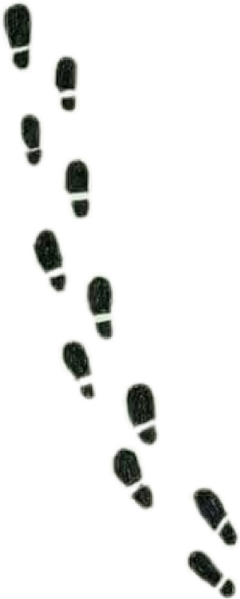 Transparent footprints harry potter. Largest collection of free
