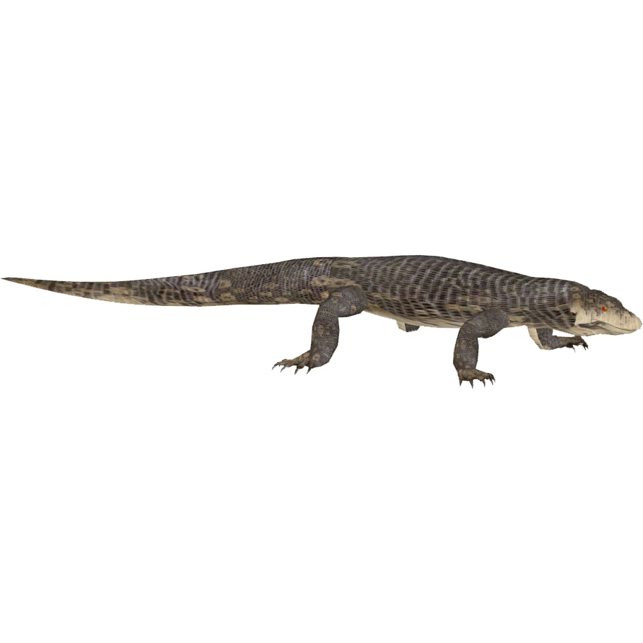 Transparent gecko water. Image monitor cougarfan png