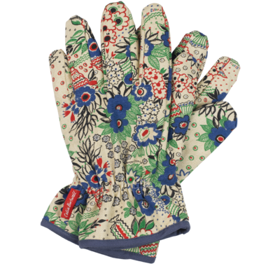 Transparent gloves gardening. Helping hand for with