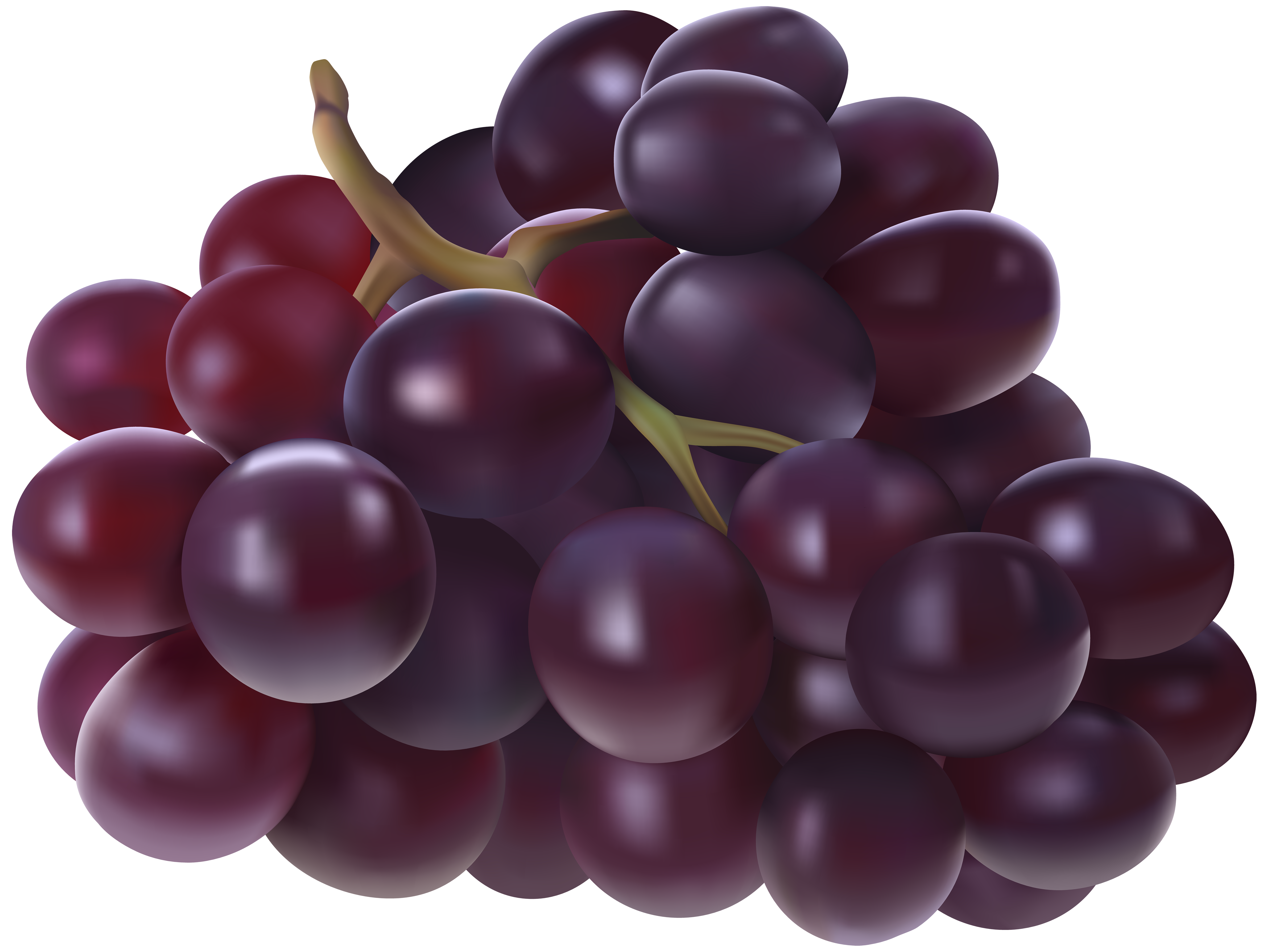 Png image gallery yopriceville. Transparent grapes high quality png