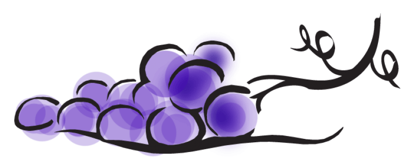 Transparent grapes cartoon. Png free images toppng
