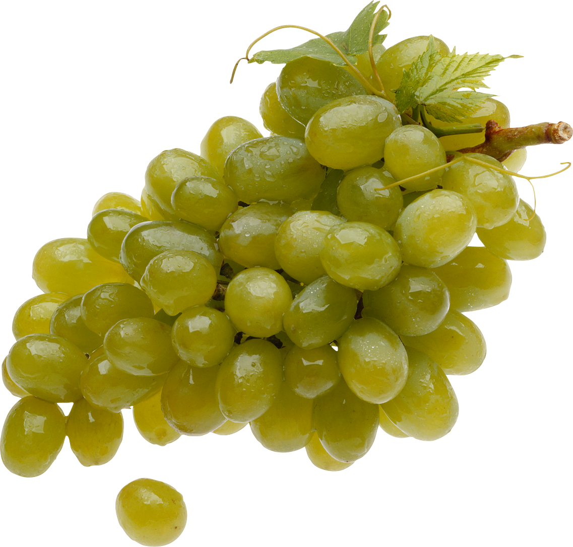 Green png image purepng. Transparent grapes high quality vector freeuse