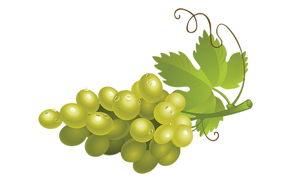 Green png image arts. Transparent grapes high quality image stock