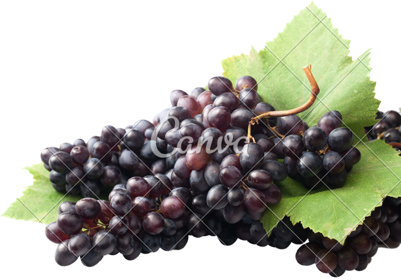 Transparent grapes isolated. Ripe sweet on white