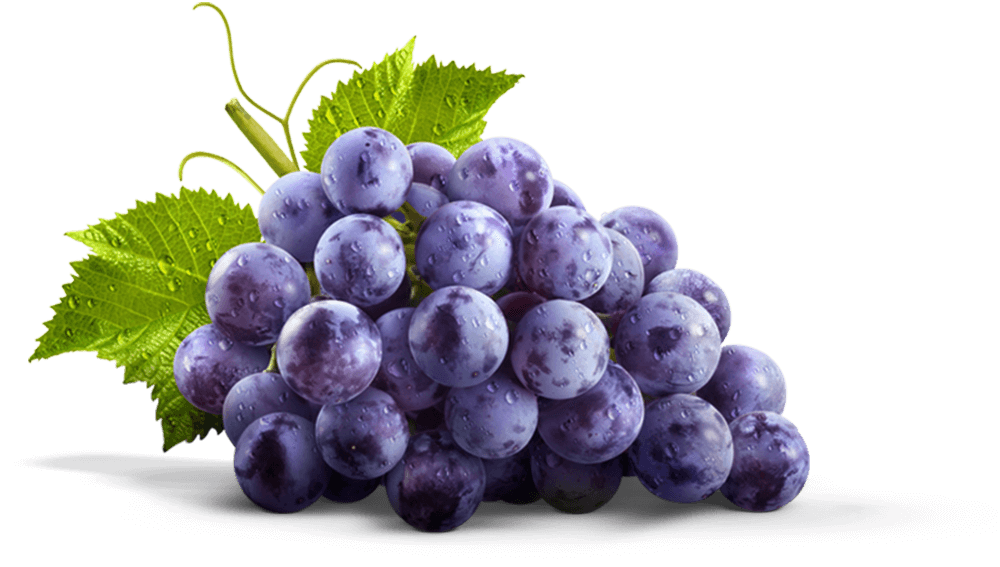 Transparent grapes violet. Juices jams jellies spreads