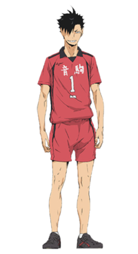 Transparent haikyuu lev. Characters by picture quiz