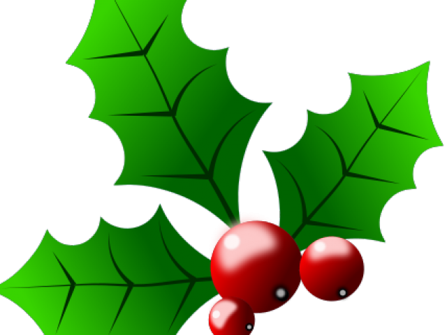 Transparent holly and ivy. Collection of free holy