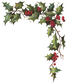 Transparent holly and ivy. Png images pluspng the