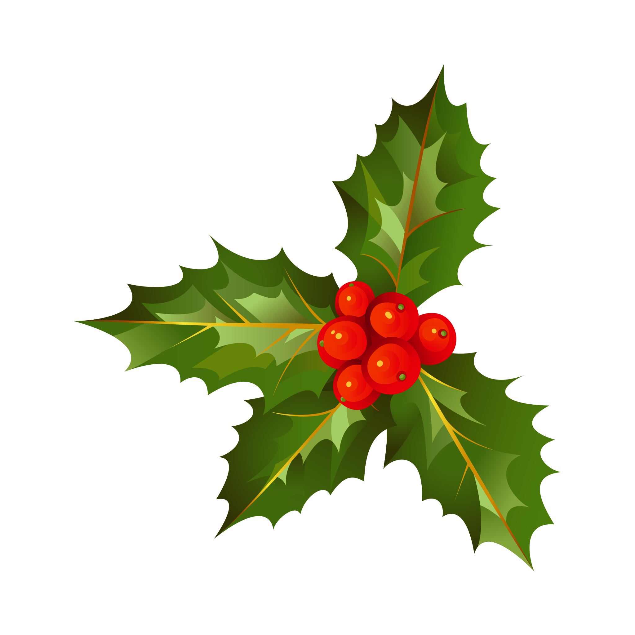 Transparent holly decoration. Christmas with leave png