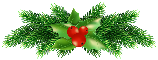 Transparent holly green. Christmas png images free