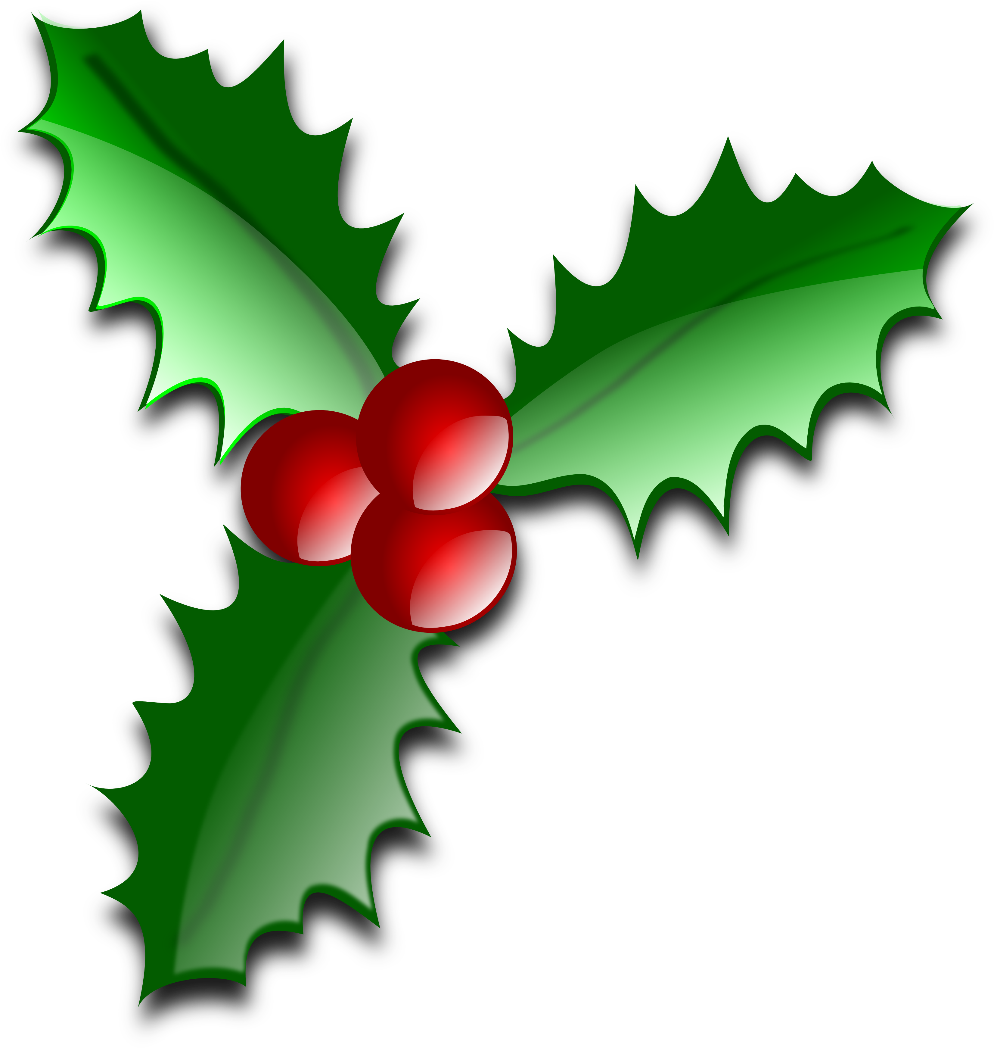 Transparent holly holiday. Download galleries clipart leaves