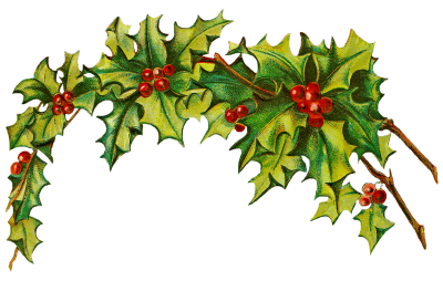 Transparent holly holiday. Download holidays free png