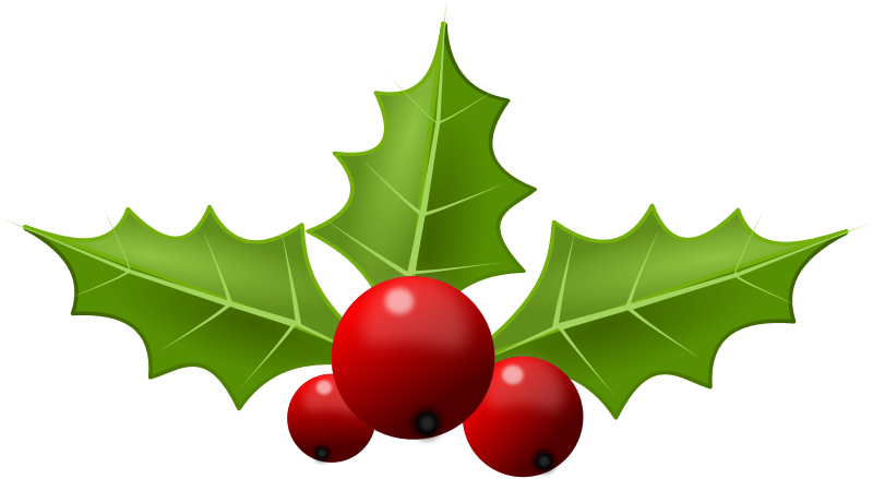 collection of holly. Holy clipart clip royalty free