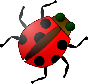 Vector organism insect. Ladybug man members spray image library stock