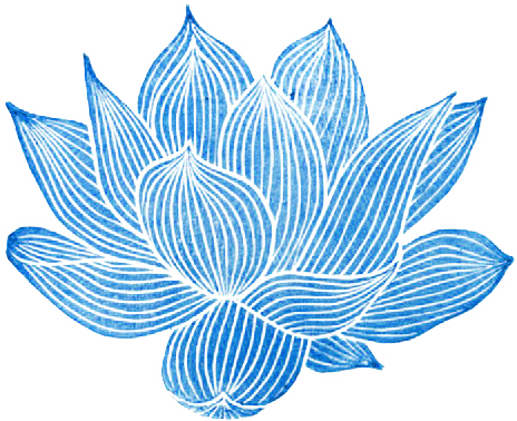 intricate drawing lotus flower