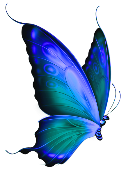 Transparent moth blue green. And deco butterfly clipart