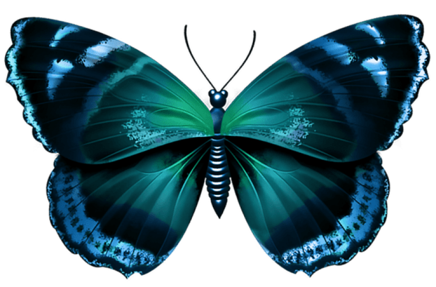 Transparent moth blue green. Download butterfly clipart png