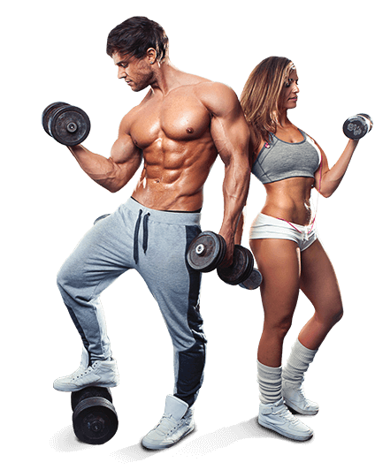 Transparent muscles gym. Stable gains workout your
