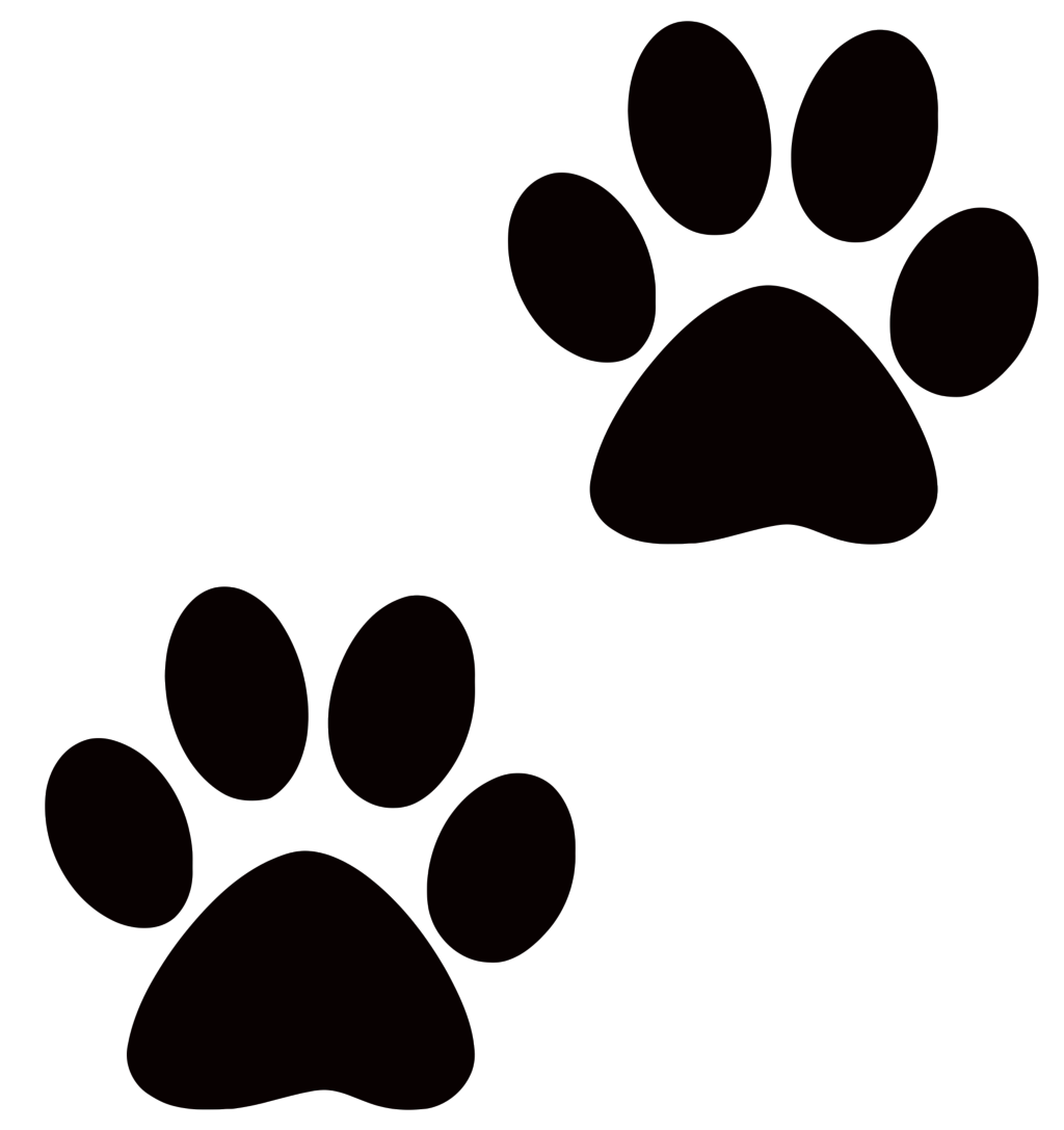 Transparent paw clear background. Collection of print