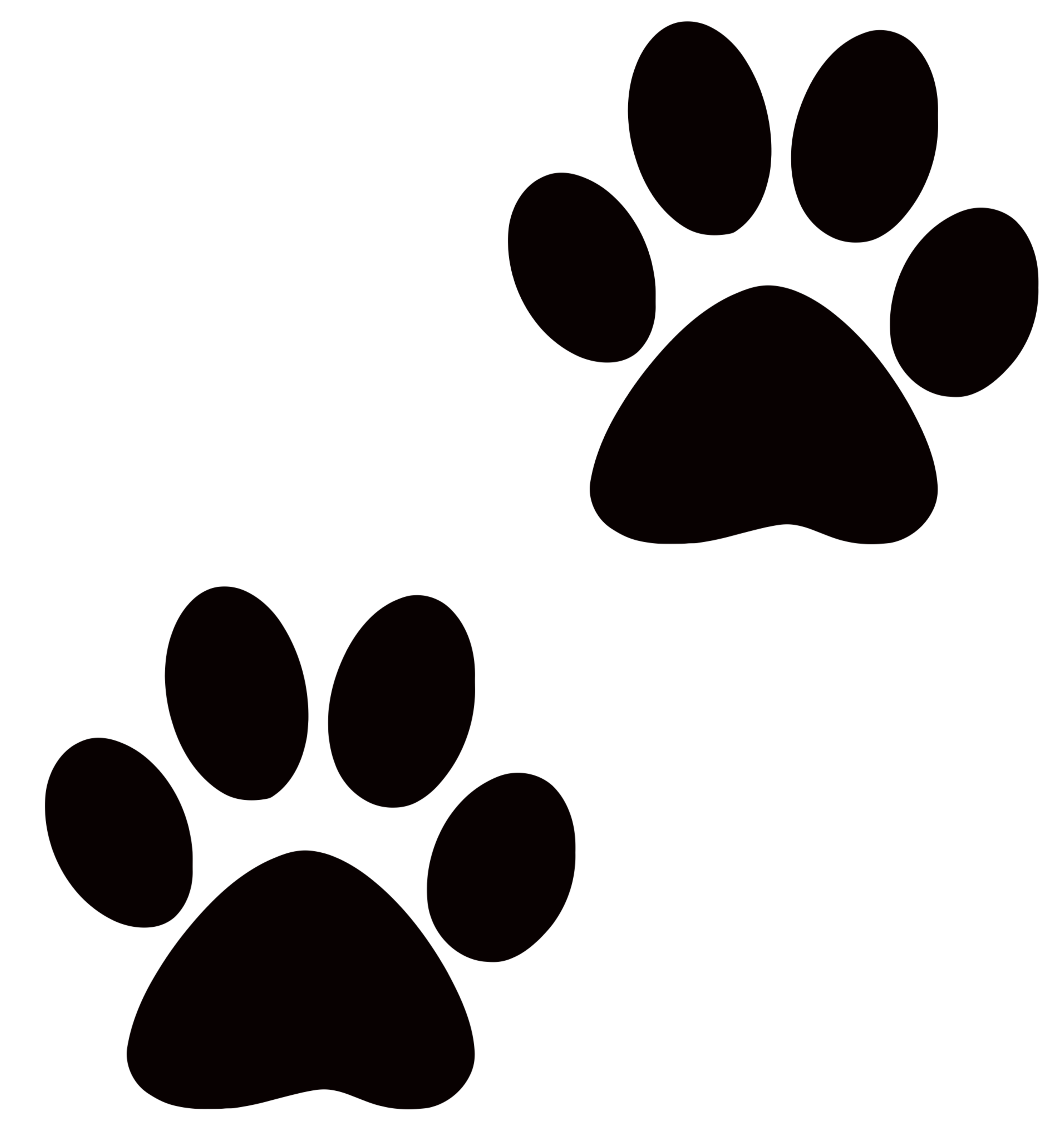 Transparent paw drawing. Collection of print