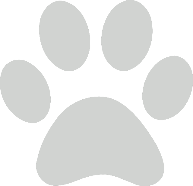 Transparent paw gray. Download dog clipart service