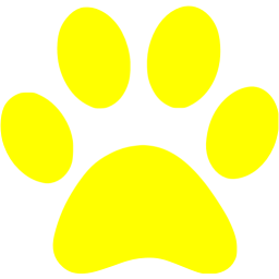 Transparent paw yellow. Icon free icons