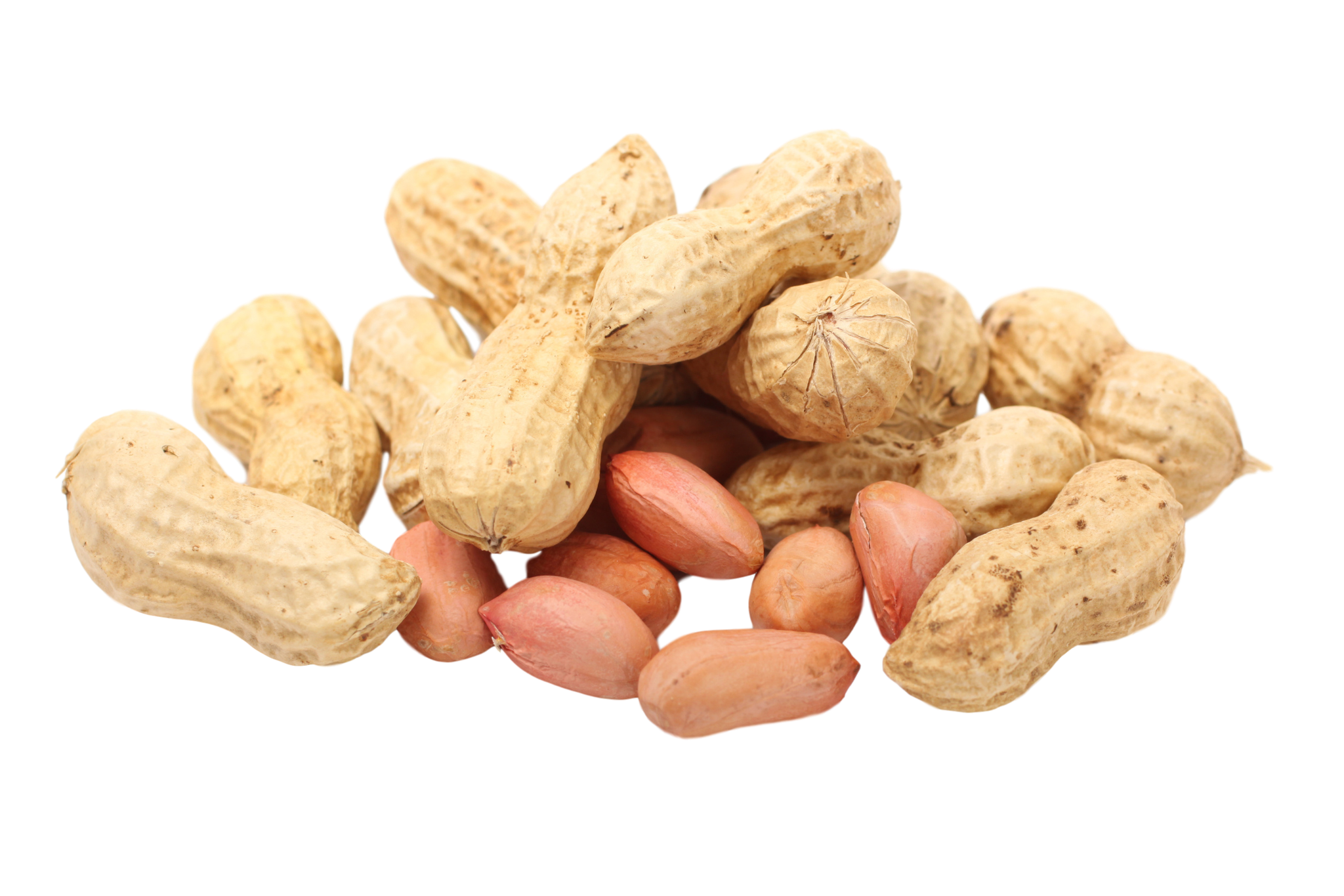Peanuts transparent background. Peanut png image with