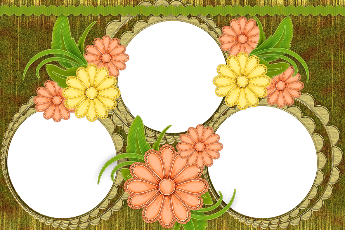 Transparent photo frame png. Floral gallery yopriceville high