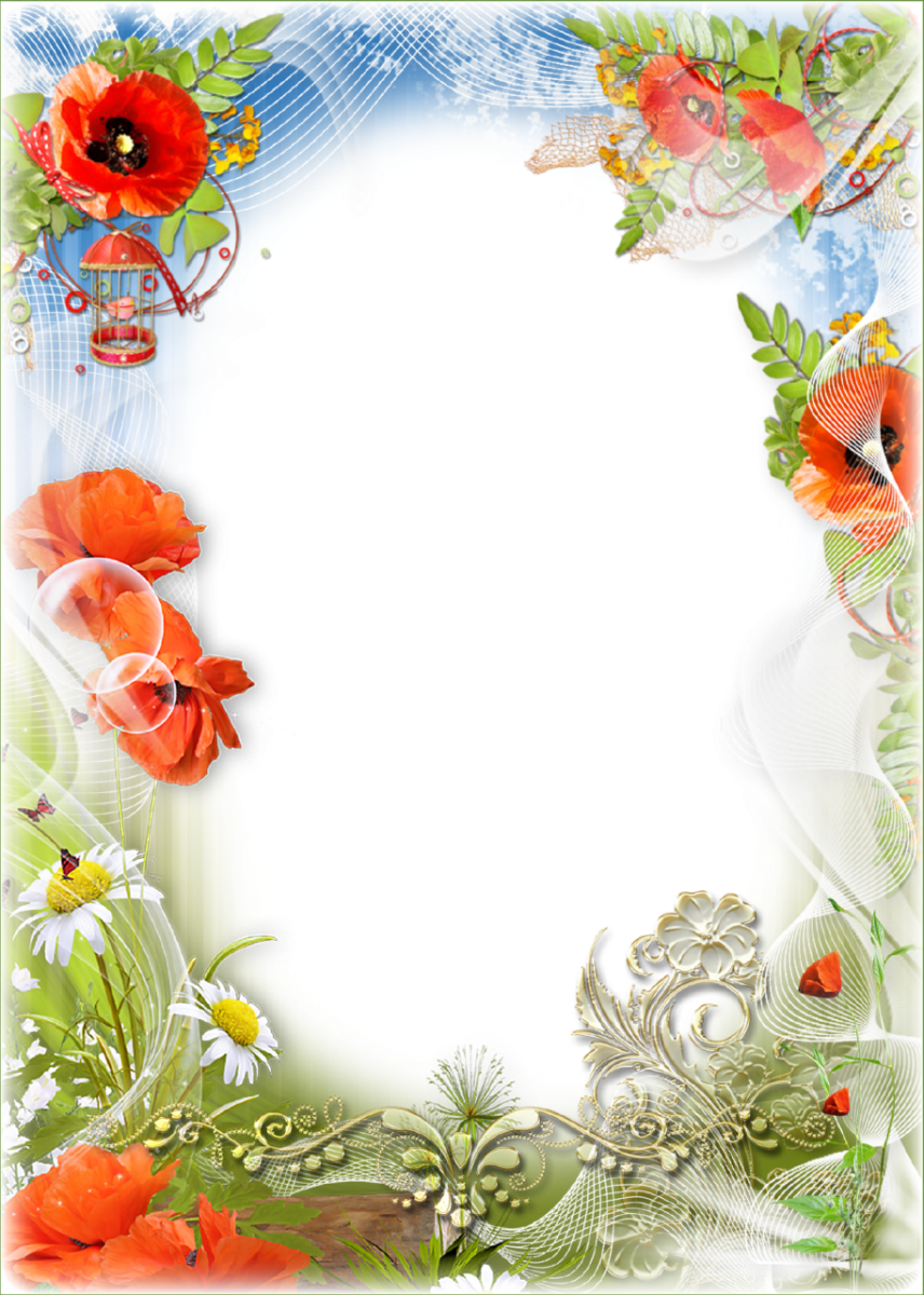 Transparent photo frames png. Free abstract floral frame