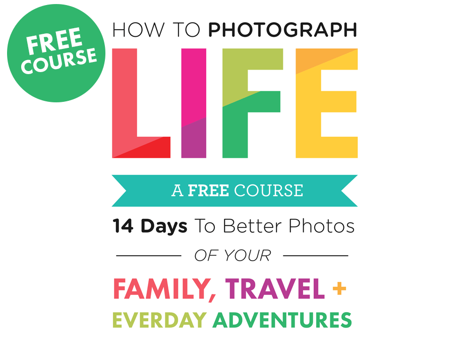 Transparent photographs concentrate. How to photograph life