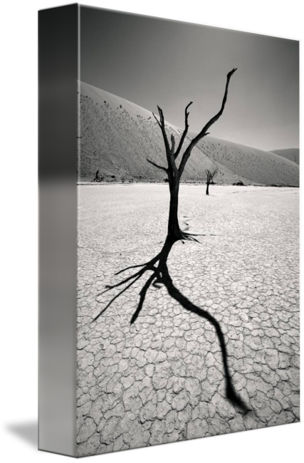 Transparent photography surreal. Desert landscape by alexander