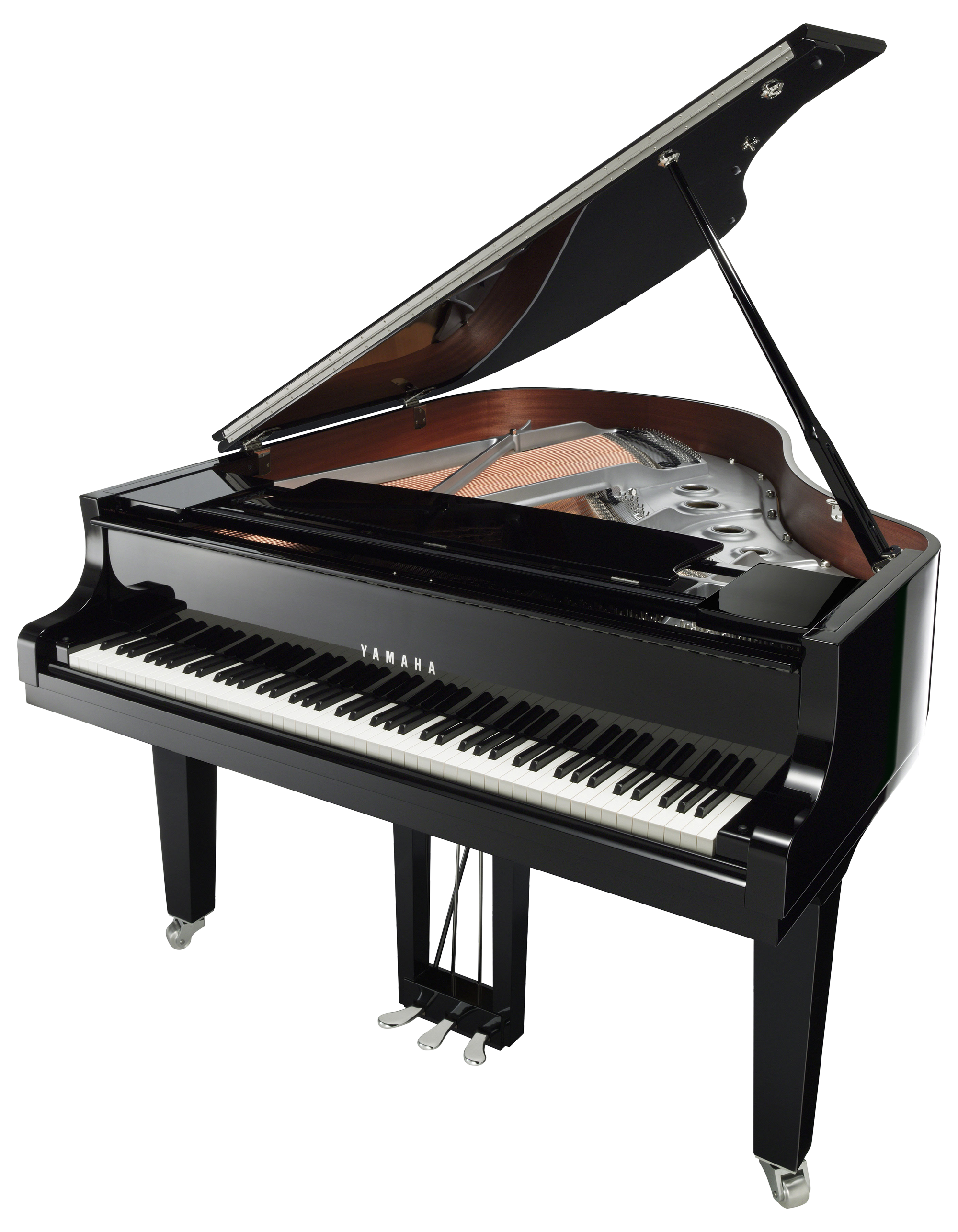 Best music store in. Transparent pianos big vector transparent library
