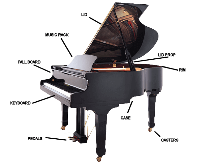 Transparent pianos customized. Guide to buying a