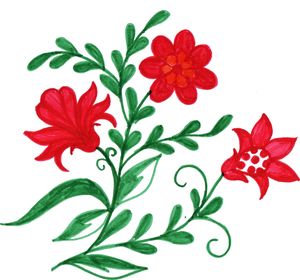 Transparent png flower images. Colorful corner onlygfx