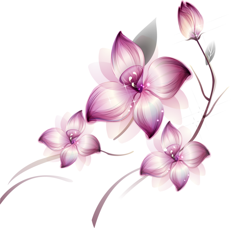 Painted large pink flower. Transparent flowers png clipart