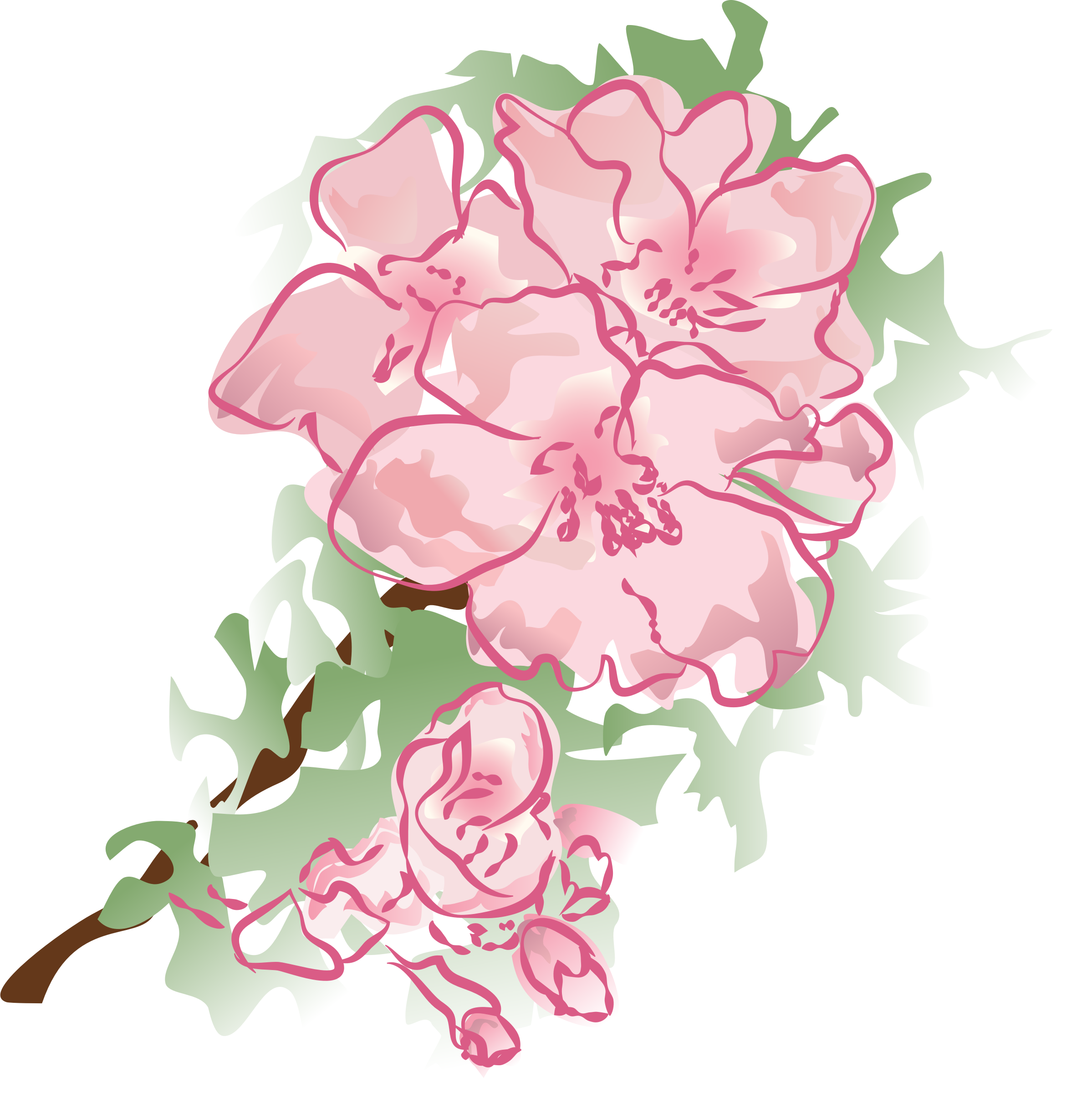 Pink watercolor flowers png. Clipart decoration flower big