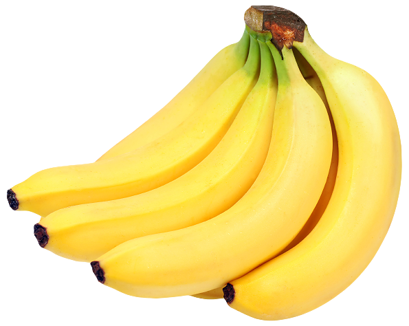 Transparent png hand of bananas. Bunch clipart best web
