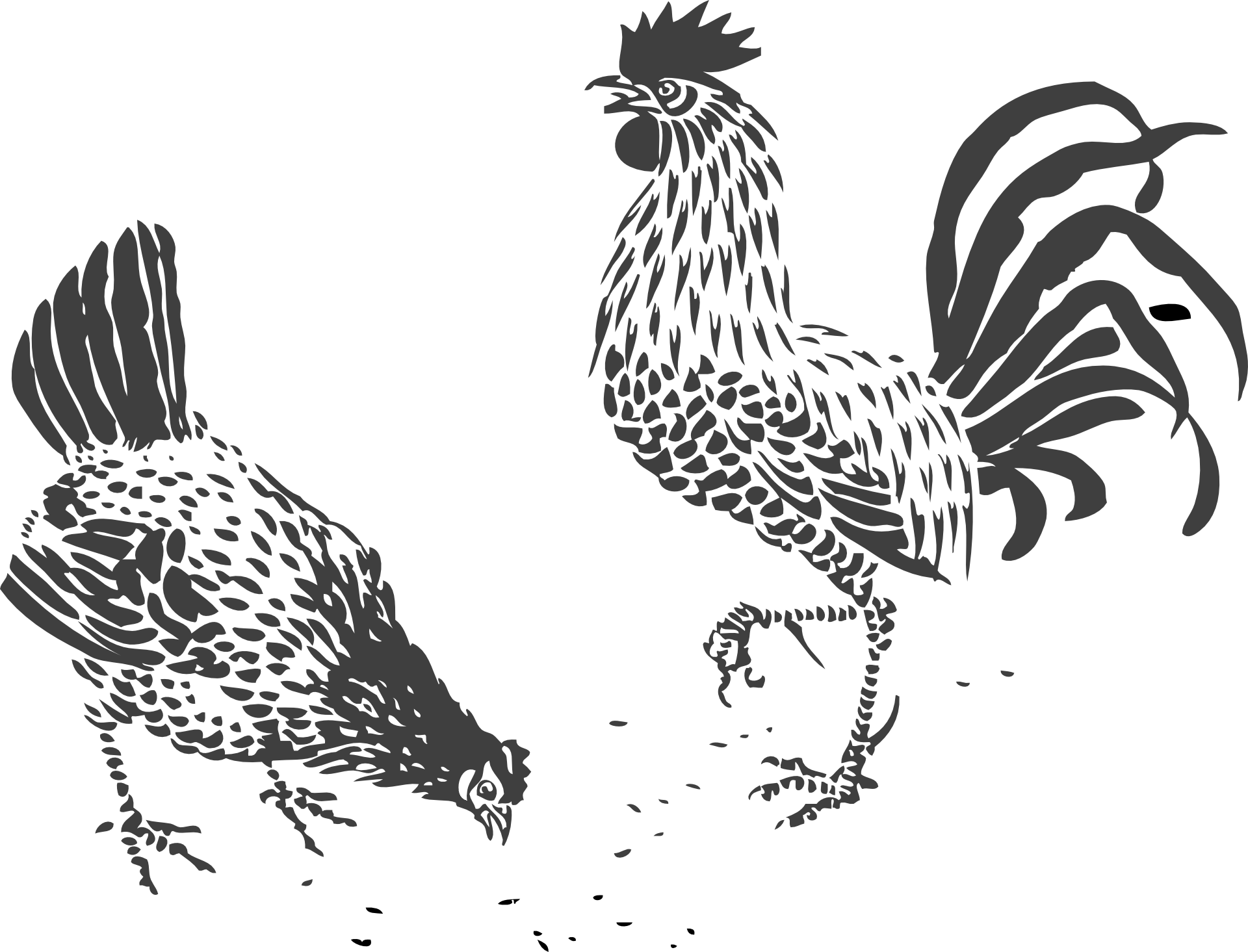 Transparent rooster drawing. Chicken line art clip