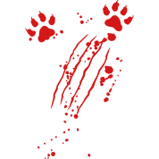 Transparent scratches paw. Scratch mark with blood